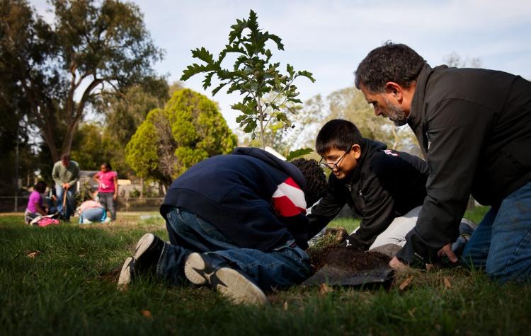 PHC Planting (2)