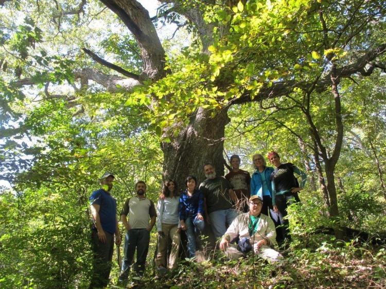 New Tree School saunterers under old chinquapin oak in Fremont County, Iowa
