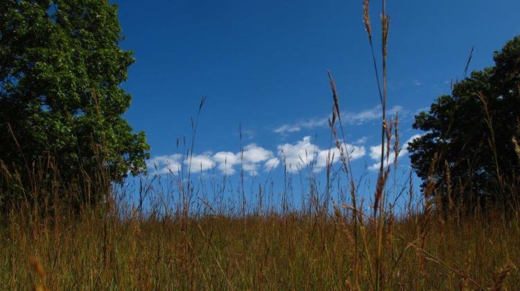 clouds waubonsie