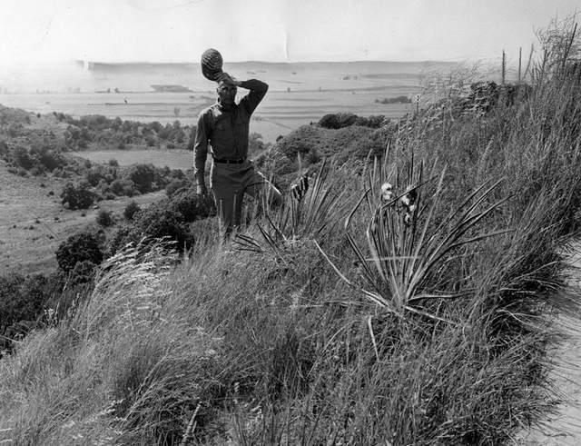 1957 Yucca
