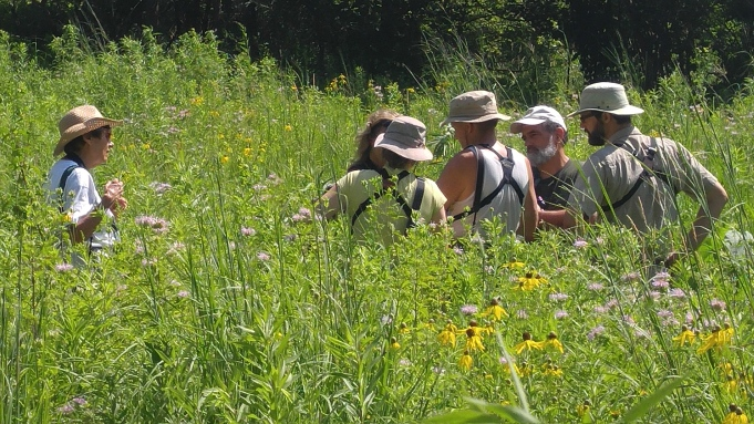 gathering at Rahel meadow