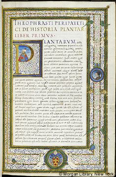c 1523
