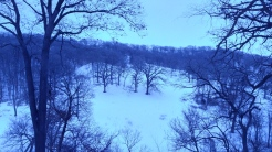 loess-hills-winter-woods