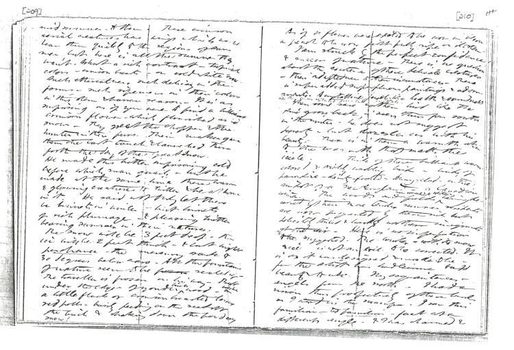 thoreau-journal-manuscript